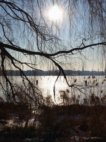 alster-winter-hamburg-ufer